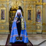 Митрополит Тамбовский Феодосий