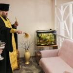 Центр защиты семьи, материнства и детства Тамбовской епархии имени преподобного Амвросия Оптинского